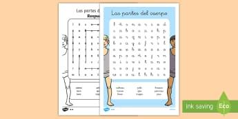 Sopa de letras: Las partes del cuerpo - sopa de letras, búsqueda, partes del cuerpo, cuerpo, el cuerpo, cuerpos, humano, cuerpo humano, act