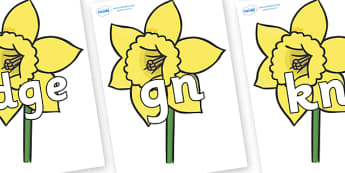 Silent Letters on Daffodils - Silent Letters, silent letter, letter blend, consonant, consonants, digraph, trigraph, A-Z letters, literacy, alphabet, letters, alternative sounds