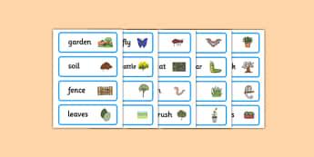 Backyard Habitat Word Cards - australia, Science, Year 1, Habitats, Australian Curriculum, Backyard, Living, Living Adventure, Environment, Living Things, Animals, Plants, Word Cards