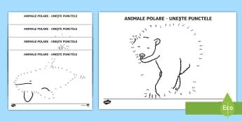 Animalele polare - Unește punctele - Polul nord, polul sud, viața la poli, animale polare, animale, arctic, antarctic, antarctida, ocean