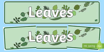 Leaves Display Banner - leaves, leaf, banner, plants, flowers