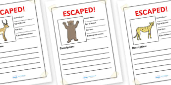 Escaped Animal Writing Frames - writing frames, escaped animals, page borders, writing template, templates, writing aids, fill in, lined pages, circus animals, help poster, gazelle, bear, cheetah, elephant, giraffe, hippo, hyena, leopard, lion, lizar