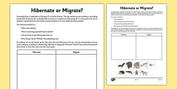 Hibernate or Migrate? Groundhog Day Activity Sheet - hibernate, migrate, animals, worksheet