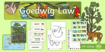 Pecyn Arddangosfa Parod Y Goedwig - WL Social Media Requests in Welsh FP (HIGH PRIORITY), pecyn arddangosfa Y Goedwig law, arddangosfa,  - WL Social Media Requests in Welsh FP (HIGH PRIORITY), pecyn arddangosfa Y Goedwig law, arddangosfa,