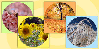 Four Seasons Display Photo Cut Outs - seasons, weather, photos