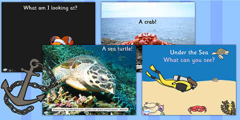 Under the Sea What Can You See PowerPoint - under the sea, ppt