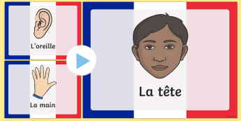 French Body Parts PowerPoint - French, Body, Parts, France, Leg