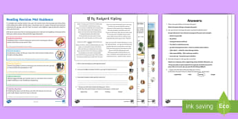 SATs Survival Year 6: Reading (4) Revision Activity Mat Pack 4 - SATs Survival Materials Year 6, SATs, assessment, 2017, English, SPaG, GPS, grammar, punctuation, sp