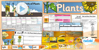 PlanIt - Science Year 3 - Plants Unit Pack - planit, plants, pack