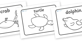Story Sequencing to Support Teaching on Commotion In The Ocean - Story, book, sequencing, visual aids, resources, Giles Andreae, David Wojtowycz, story sequencing, teaching resources, book resources, sea creatures, sea, book resource