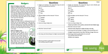 KS1 Badgers Differentiated Reading Comprehension Activity - Children's Books, story, book, Easter, save, saving, Easter Bunny, bunny, bunnies, stories, chick,