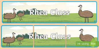 Rhea Class Display Banner - Rhea Class Display Banner - birds, class, display banner, display, abnner, bird, rhea, south america