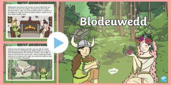 Blodeuwedd PowerPoint - Blodeuwedd, chwedlau, welsh stories, welsh traditional stories, flower face,Welsh