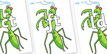 Final Letter Blends on Praying Mantis to Support Teaching on The Bad Tempered Ladybird - Final Letters, final letter, letter blend, letter blends, consonant, consonants, digraph, trigraph, literacy, alphabet, letters, foundation stage literacy