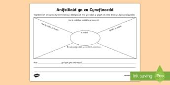 Taflen Anifeiliaid yn eu Cynefinoedd - Cartrefi, anifeiliaid, cynefinoedd, ,Welsh
