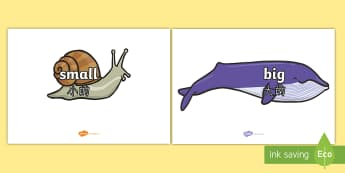 Size Words on Whales and Snails A4 Display Posters English/Mandarin Chinese - Size Words on Whales and Snails -adjectives, VCOP, describing, display, poster, , tasty, scary, ugly