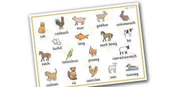 Scottish Gaelic Pets Word Mat - scottish gaelic, pets, pet, word mat, animal, language, languages, scotland, key words, gaels, celtic, literacy, aids, cats, dogs