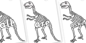 Tricky Words on Dinosaur Skeletons - Tricky words, DfES Letters and Sounds, Letters and sounds, display, words