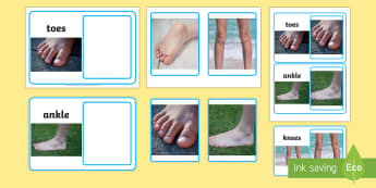 Workstation Pack: Photo to Photo Body Parts Matching Activity Pack