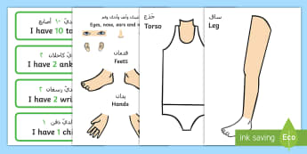Body Part Counting Cut-Out Activity Arabic/English - EAL Body Part Counting Cut-Out Activity - ourselves, myself, body parts, human body, oursleves, coun