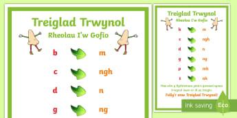 Poster Treiglad Trwynol Rheolau i'w gofio - Mutations Posters / Posteri Treigladau,Welsh