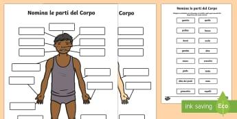 Nomina le Parti del Corpo Attività - le, parti, del, corpo, diagramma, ossa, viso, occhi, italiano, italian, scienze