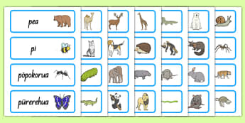 Animals Word Cards