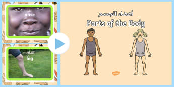 Parts of the Body PowerPoint Arabic/English - EAL Parts of the Body PowerPoint - parts, body, powerpoint, human, pp, ppt,Arabic-translation