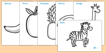 Colouring Sheets to Support Teaching on Handa's Surprise - colour, sheet, activity, activities