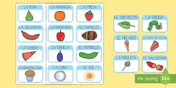 Tarjetas de vocabulario para ayudar la enseñanza de: La oruga glotona - lecto, leer, literatura infantil, cuentos, cuento, crecimiento, ciclo de vida, ciclo vital, bichos,