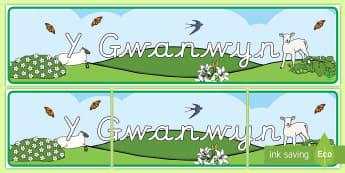 Y Gwanwyn Display Banner - Spring Display Banner - Spring, Display banner, poster, display, lambs, daffodils, new life, flowers