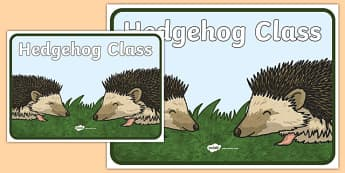 Hedgehog Class Display Poster - hedgehog, class, display poster, display, poster, hedgehog class