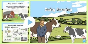 Dairy Farming PowerPoint - CfE, dairy, farming, Scottish farming, farm, milk, cow