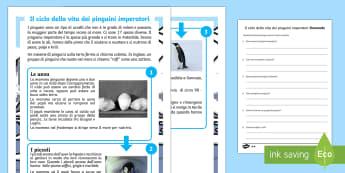 I Pinguini Imperatori Lettura Differenziata - pinguini, imperatori, domande, risposte, lettura, comprensione, italiano, italian