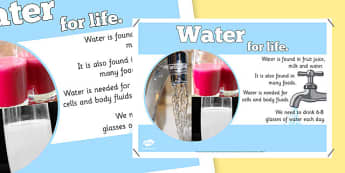 Year 6 Water Nutrients Display Poster - healthy eating, ourselves