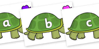 Phase 2 Phonemes on Tortoise - Phonemes, phoneme, Phase 2, Phase two, Foundation, Literacy, Letters and Sounds, DfES, display