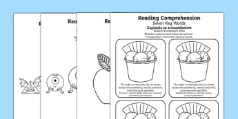 Reading Comprehension Seven Key Words Activity Sheets Polish Translation - SEN/SALT, reading, inference, information, speech, language, instructions, colour, colouring, worksheet