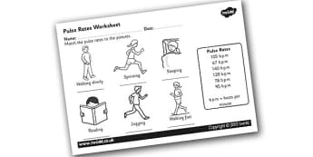 Pulse Rates Worksheet - pulse, pulse rate, taking your pulse, pulse rates experiment, pulse worksheet, the human body, heart rate worksheet, exercise, ks2