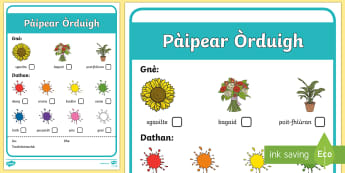 Florist Order Forms - florist, role play, curriculum for excellence, cfe, order forms, order, forms, play