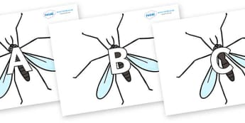 A-Z Alphabet on Crane Flies - A-Z, A4, display, Alphabet frieze, Display letters, Letter posters, A-Z letters, Alphabet flashcards