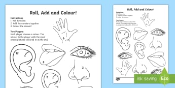 The Senses Roll and Colour Activity Sheet, worksheet