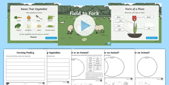KS1 Field to Fork Resource Pack - animal, plant, growing, vegetables, meat, farming.