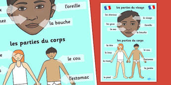 French Body Parts Posters - French, Body, Parts, Posters, France