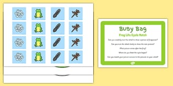 Frog Life Cycle Match Busy Bag Prompt Card And Resource Pack - spin wheel, frogspawn, froglet, tadpole, tadpoles, frogs, eyfs, ealry years, matching, spring, growth, growing