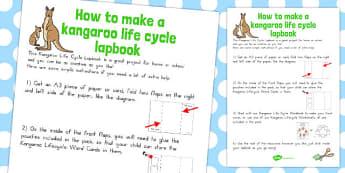 Kangaroo Life Cycle Lapbook Instruction Sheet - australia, sheet