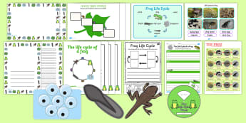 Life Cycle of Frog - frog, life cycle, resources, activities - Frog Life Cycle - frog, life cycle, resources, activities