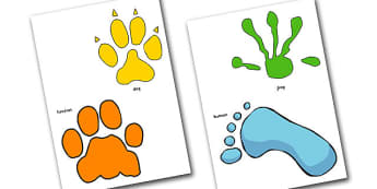 Animal Footprint Cut Outs - animal, cut outs, role play, games