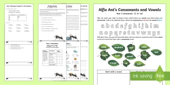 Year 3 Grammar: Using 'A' or 'An' Learning From Home Activity Booklet - Learning From Home Activity Booklets (KS2), a, an, indefinite article, articles, determiners, SPaG,