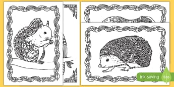 Autumn Animals Mindfulness Colouring Pages