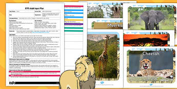 Safari Animal Masks EYFS Adult Input Plan and Resource Pack